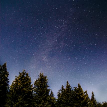 astroturismo, noche estrellada, patrimonio natural, patrimonio cultural, pinos, astronomía