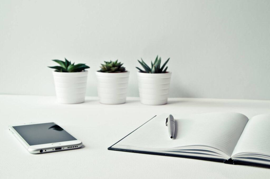 Eco-innovación: ¿Cómo lo hago?